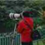 摄影人生2012